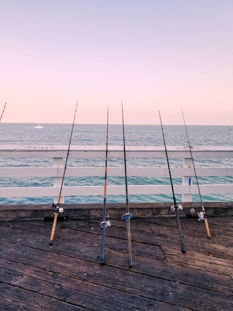 Fishing Pole- Your Guide For Fishing Adventure